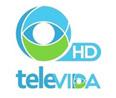 Televida Chillan En Vivo